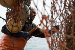 sustainable fishing trawling