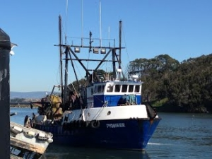 Sustainable Fishing in California
